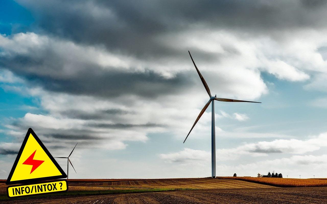 La terrible pollution silencieuse de l'environnement par les éoliennes